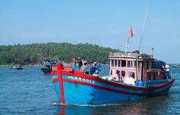 Bình Định: Ngư dân rút hồ sơ vay vốn theo Nghị định 67