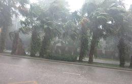 Thời tiết ngày 25/4: Hà Nội có khả năng xảy ra mưa đá
