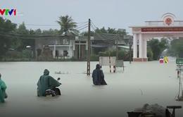8 tỉnh được hỗ trợ 165 tỷ đồng khắc phục thiệt hại bão lũ