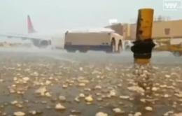 Hàng loạt chuyến bay ở Kansas (Mỹ) bị hoãn, hủy do mưa đá