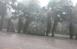 Dự báo thời tiết 10/5: Nhiều vùng có khả năng xảy ra tố, lốc