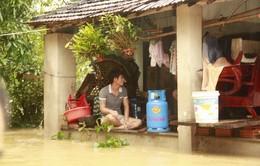 Thêm 7 người thiệt mạng do lũ lụt tại miền Trung