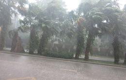 Thừa Thiên - Huế: Lốc xoáy kèm mưa đá tàn phá hơn 300 nhà