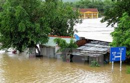 Miền Trung - Tây Nguyên thiệt hại hơn 783 tỉ đồng do mưa lũ