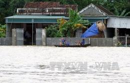Hỗ trợ khắc phục ô nhiễm môi trường do mưa lũ tại Hà Tĩnh