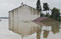 Hơn 200 người thiệt mạng do mưa lũ tại Trung Quốc
