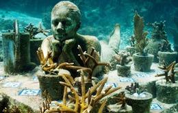 Jason deCaires Taylor - nghệ sĩ điêu khắc của đại dương