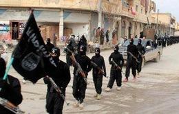 Somalia thu giữ thuốc nổ của IS