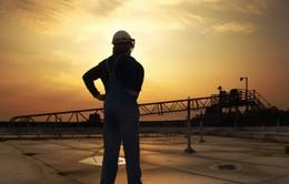 """OPEC dự báo gây sốc về """"vàng đen"""" trong năm 2017"""