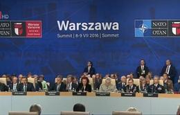 NATO tăng cường sự hiện diện quân sự quy mô lớn tại Đông Âu