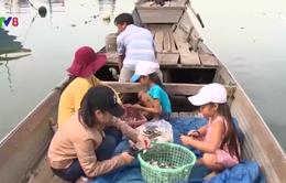 Con em ngư dân đối diện nguy cơ thất học trước thềm năm học mới