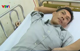 7 nạn nhân trong vụ ngạt khí biogas tại Cà Mau đã xuất viện