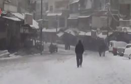 Nạn đói hoành hành tại Syria do chiến sự leo thang