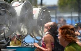 Nắng nóng hoành hành nhiều nơi trên thế giới
