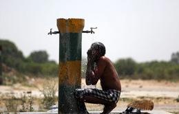 Hạn hán ảnh hưởng đến hàng trăm triệu người dân Ấn Độ