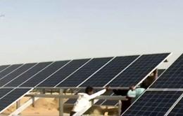 Phát động chương trình năng lượng mặt trời 1.000 tỷ USD