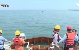Nước biển tại 6 bãi tắm ở Hà Tĩnh đều an toàn