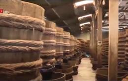 Bình Thuận: Nguy cơ thiếu nguyên liệu chế biến nước mắm
