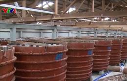 Thiếu nguyên liệu sản xuất nước mắm truyền thống