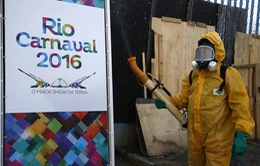 Ban tổ chức Olympic Rio 2016 bác bỏ lo ngại về virus Zika