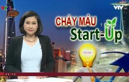 Start-up Việt Nam đổ xô sang Singapore khởi nghiệp