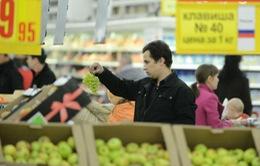Nga gia hạn lệnh cấm vận nông sản phương Tây