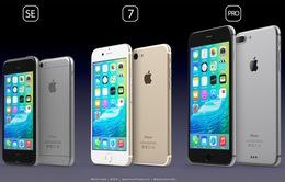 Ngắm trước thiết kế của iPhone SE, iPhone 7 và iPhone Pro trước giờ G