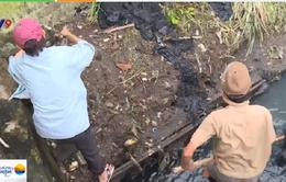 Người dân TP.HCM chung tay khơi thông kênh rạch chống ngập