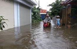 Hải Phòng: 400 hộ dân quanh năm sống trong ngập úng