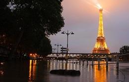 Bảo tàng nổi tiếng Louvre (Pháp) đóng cửa vì ngập lụt