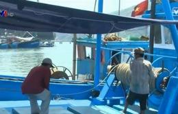 Khan hiếm lao động biển: Vì thu nhập quá thấp