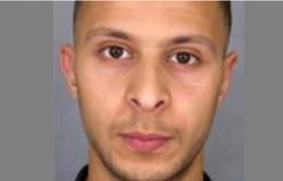 Nghi phạm chính trong vụ khủng bố Paris bị bắt