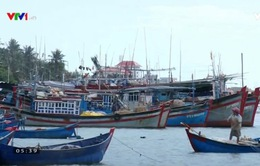 Hỗ trợ 100% kinh phí mua BHYT trong 3 năm cho ngư dân miền Trung