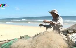 Giá các mặt hàng thủy hải sản tại Quảng Trị xuống thấp