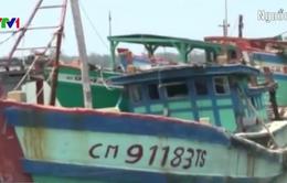 Nhiều tàu cá Việt Nam bị bắt giữ trên vùng biển Thái Lan