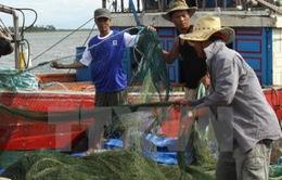 Đề nghị xây dựng bản đồ vùng biển cấm ở 4 tỉnh miền Trung