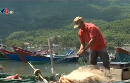 TT-Huế: Còn nhiều ngư dân cần được hỗ trợ