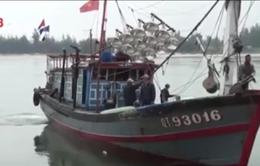 Biên phòng Quảng Trị tiếp nhận 5 ngư dân gặp nạn trên biển