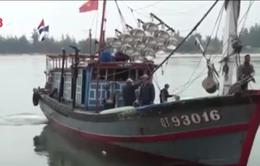 Cứu 9 ngư dân Quảng Ngãi bị chìm tàu cá trên biển