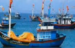 Thái Lan xác nhận bắt giữ 5 tàu cá và 48 ngư dân Việt Nam
