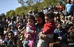 Malaysia sẽ hỗ trợ người tị nạn tiếp cận BHYT