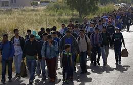 Thỏa thuận về người di cư giữa EU - Thổ Nhĩ Kỳ có hiệu lực