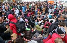 Áo sẽ tiếp tục trục xuất thêm nhiều người nhập cư