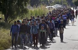 Bỉ tái kiểm soát đường biên giới với Pháp ngăn người tị nạn