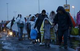 Mỹ hỗ trợ châu Âu giải quyết vấn đề người di cư