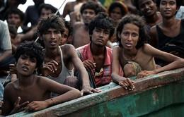 Bỉ, Đức thỏa thuận với Morocco hồi hương người nhập cư trái phép