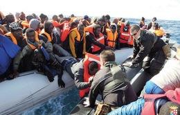 Số người di cư bị thiệt mạng tăng kỷ lục