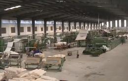 Nhà máy Dệt Nam Định - Viết tiếp trang sử mới