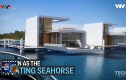 Nhà cá ngựa – Cấu trúc nhà nổi trên mặt nước đầu tiên trên thế giới