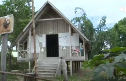 Nhiều nhà rông văn hóa cộng đồng Tây Nguyên bị bỏ hoang